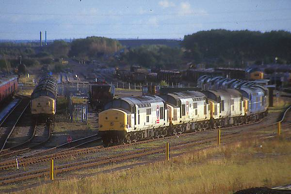 Picture of Class 37's at Tyne Yard - Free Pictures - FreeFoto.com