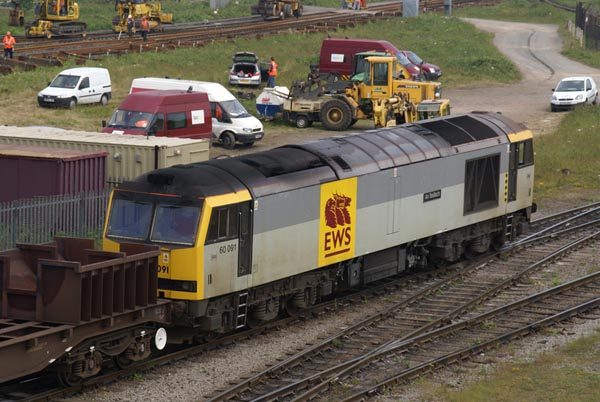 Picture of EWS Class 60 60091 at Tees Yard - Free Pictures - FreeFoto.com