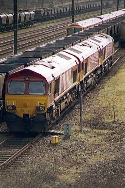 Picture of EWS Class 66 66060, 66067 and 66036 at Tyne Yard - Free Pictures - FreeFoto.com