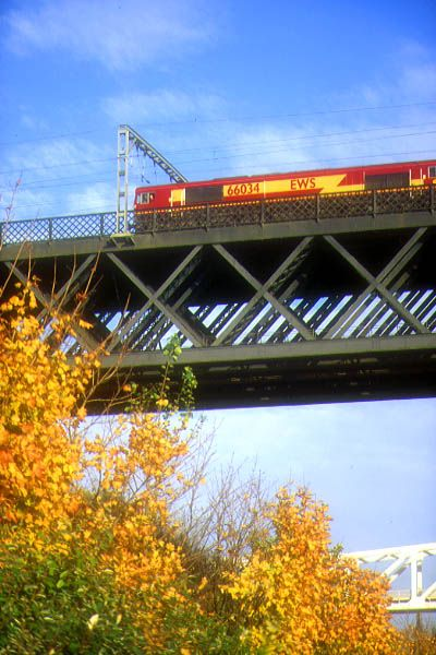 Picture of EWS Class 66 66034 crosses the King Edward VII bridge, Newcastle - Free Pictures - FreeFoto.com