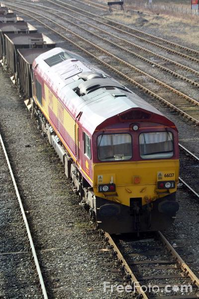 Picture of EWS Class 66 137 at Tyne Yard - Free Pictures - FreeFoto.com