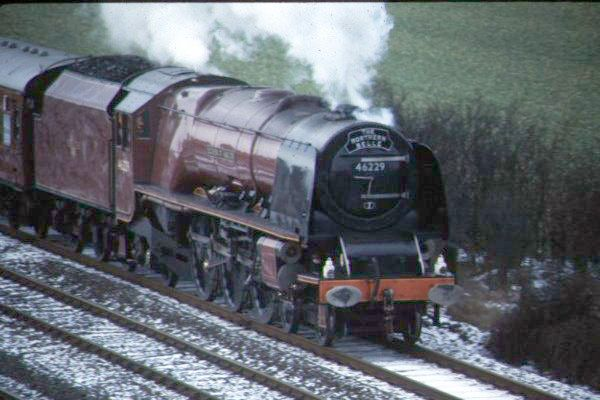 Picture of LMS 46229 Duchess of Hamilton north of Eaglescliffe. - Free Pictures - FreeFoto.com