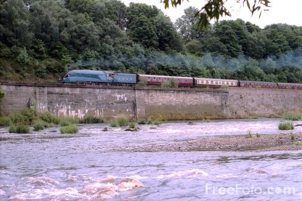Picture of Gresley A4 4468 Mallard by the River Tyne at Wylam - Free Pictures - FreeFoto.com