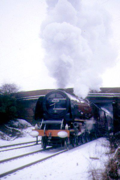 Picture of LMS 46229 Duchess of Hamilton near Eaglescliffe - Free Pictures - FreeFoto.com