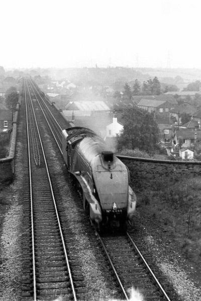 Picture of 60007 A4 Sir Nigel Gresley on Yarm Viaduct - Free Pictures - FreeFoto.com