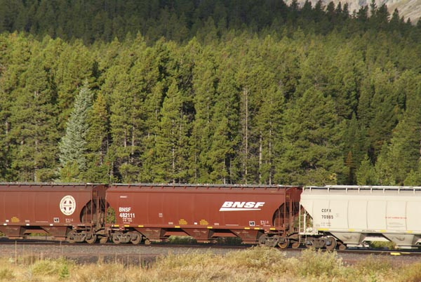 Picture of Grain Hopper - Free Pictures - FreeFoto.com