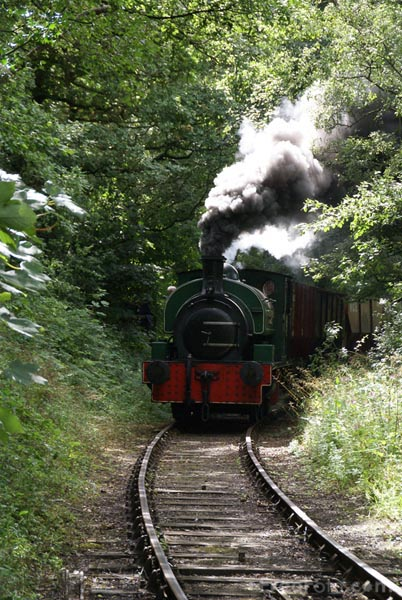 Picture of Tanfield Railway Coal Train - Free Pictures - FreeFoto.com