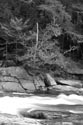 Image Ref: 3001-02-78 - Jackson Falls, Wildcat River, Jackson, New Hampshire, Viewed 6621 times