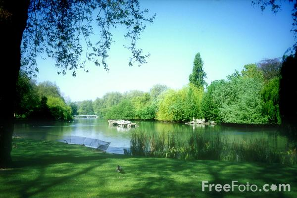 Picture of Lake, St James's Park, London - Free Pictures - FreeFoto.com