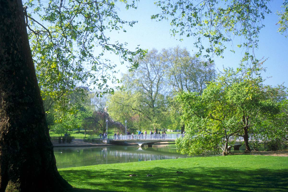 Picture of St James's Park, London - Free Pictures - FreeFoto.com