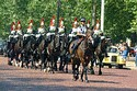 Changing of the Guard, Buckingham Palace, London, United Kingdom has been viewed 14905 times