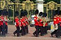 Image Ref: 31-36-39 - Changing of the Guard, Buckingham Palace, London, United Kingdom, Viewed 11274 times