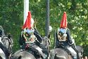 Image Ref: 31-36-7 - Changing of the Guard, Buckingham Palace, London, United Kingdom, Viewed 9584 times