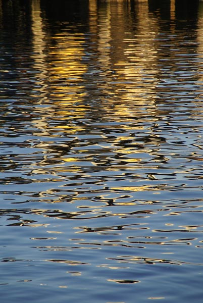 Picture of Water Texture - Free Pictures - FreeFoto.com