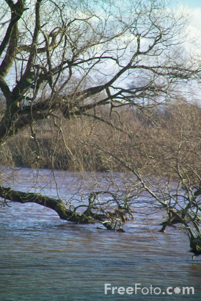 Picture of River Tees in flood - Free Pictures - FreeFoto.com