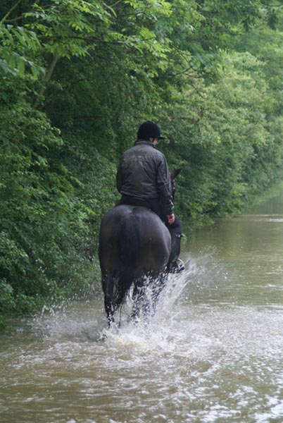 Picture of Beating the floods on horse back - Free Pictures - FreeFoto.com
