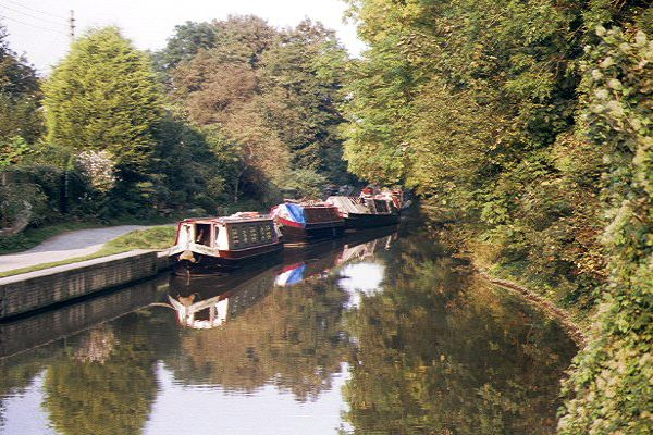 Picture of The Kennet and Avon Canal, Freshford, Bradford on Avon - Free Pictures - FreeFoto.com