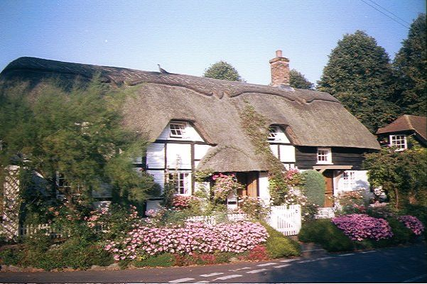 Picture of Thatched Cottage, Micheldever - Free Pictures - FreeFoto.com