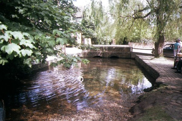 Picture of River Tillingbourne, Shere, Surrey - Free Pictures - FreeFoto.com
