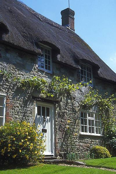Picture of Thatched Cottage, Berwick St John - Free Pictures - FreeFoto.com
