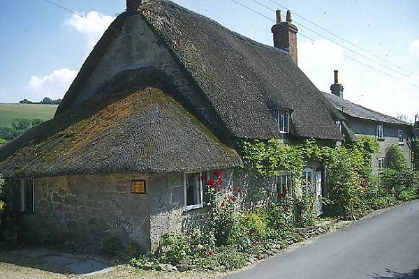 Picture of Compton Abbas - Free Pictures - FreeFoto.com