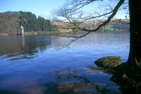 Picture of Lake Vyrnwy / Llyn Efyrnwy - Free Pictures - FreeFoto.com