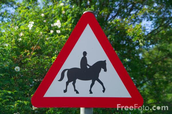 Picture of Caution horses ahead Road Sign - Free Pictures - FreeFoto.com