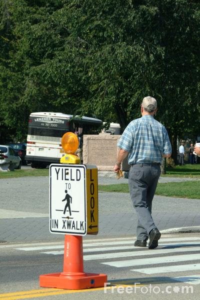 Picture of Yield in Cross Walk - USA Road Sign - Free Pictures - FreeFoto.com