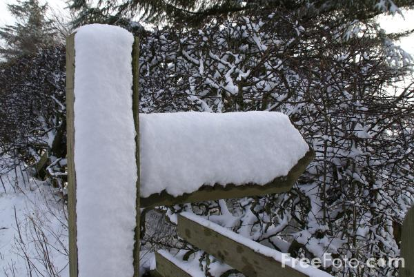 Picture of Snow covered road sign - Free Pictures - FreeFoto.com