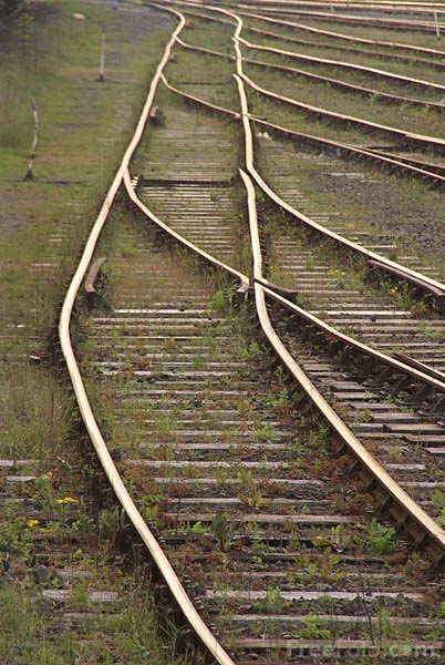 Picture of Railroad track and switch - Free Pictures - FreeFoto.com