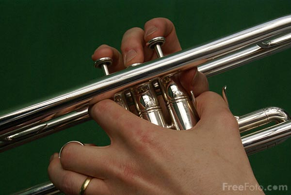 Picture of Trumpet - Free Pictures - FreeFoto.com
