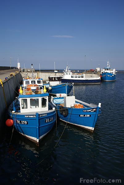 Picture of Seahouses Harbour - Free Pictures - FreeFoto.com