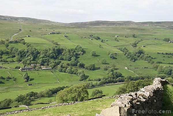 Picture of Swaledale - Free Pictures - FreeFoto.com
