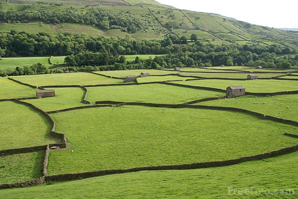 Picture of Gunnerside Barns - Free Pictures - FreeFoto.com