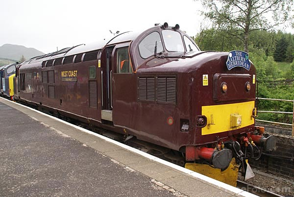Picture of WCR Maroon Class 37 37248 Loch Arkaig - Free Pictures - FreeFoto.com