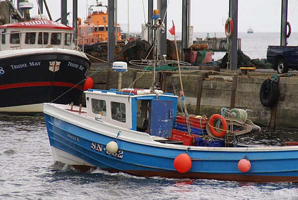 Picture of Fishing boat Stacey E SN 332 - Free Pictures - FreeFoto.com