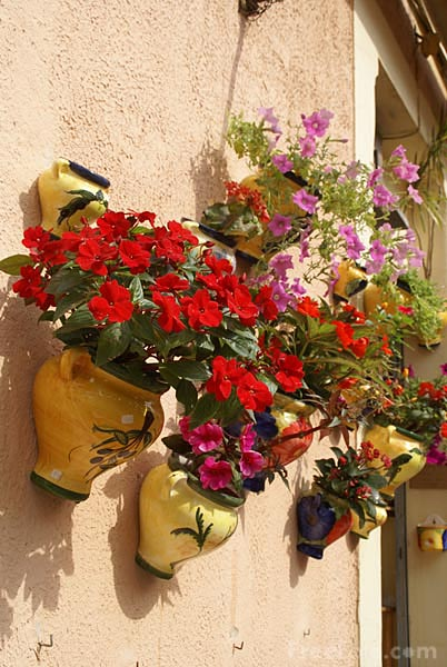 Picture of Wall mounted flower pots - Free Pictures - FreeFoto.com