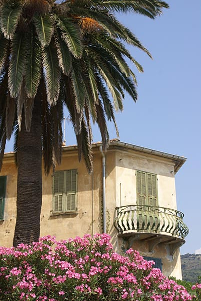 Picture of Ventimiglia Alta - Free Pictures - FreeFoto.com