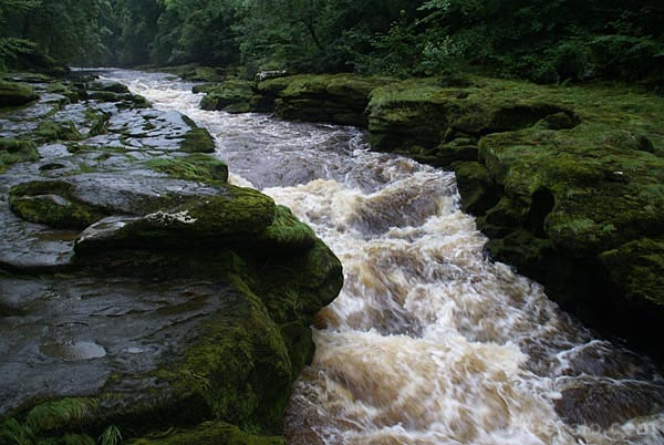 Picture of The Strid, Wharfedale - Free Pictures - FreeFoto.com