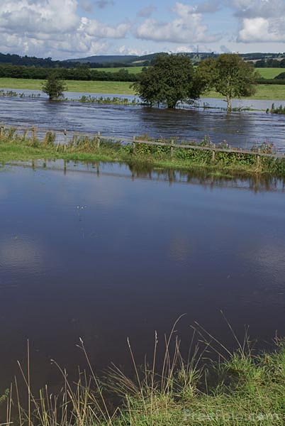 Picture of River Wharfe in flood - Free Pictures - FreeFoto.com