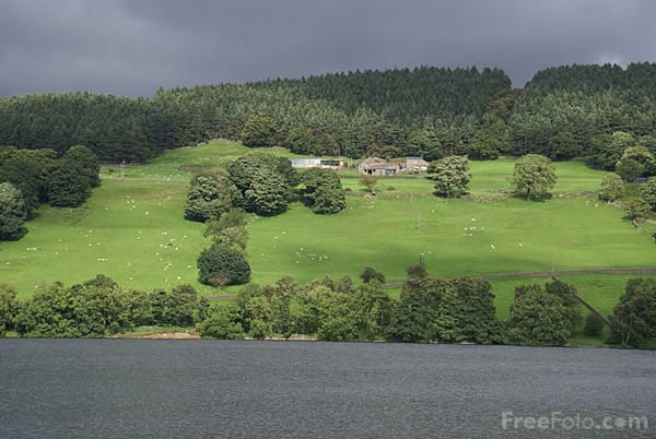 Picture of Gouthwaite Reservoir - Free Pictures - FreeFoto.com