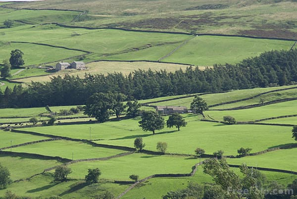 Picture of Nidderdale as viewed from Middlesmoor - Free Pictures - FreeFoto.com