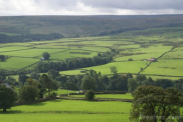 Picture of Nidderdale as seen from Middlesmoor - Free Pictures - FreeFoto.com