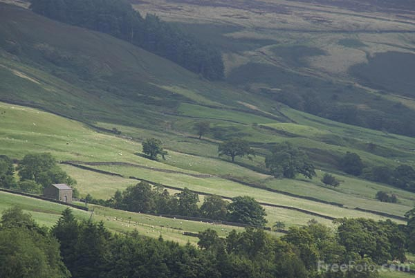 Picture of Nidderdale - Free Pictures - FreeFoto.com