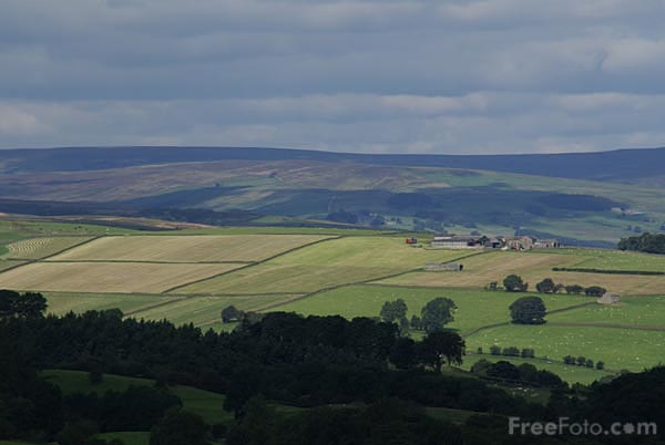 Picture of Nidderdale Area of Outstanding Natural Beauty - Free Pictures - FreeFoto.com