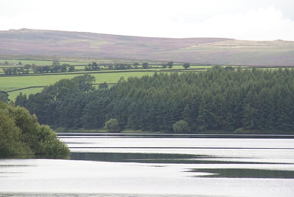 Picture of Thruscross Reservoir - Free Pictures - FreeFoto.com