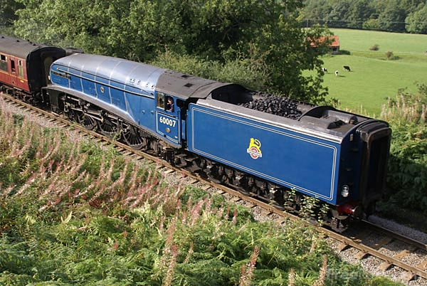 Picture of LNER class A4 4-6-2 pacific steam locomotive 60007 Sir Nigel Gre - Free Pictures - FreeFoto.com