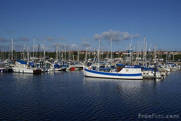 Picture of Royal Quays Marina on the River Tyne at North Shields - Free Pictures - FreeFoto.com