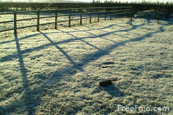 Picture of Frosty Morning - Free Pictures - FreeFoto.com