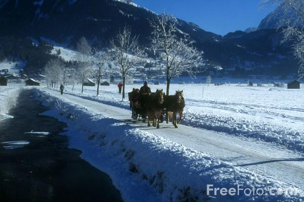 Picture of sleigh ride - Free Pictures - FreeFoto.com